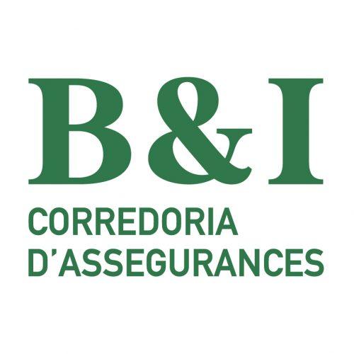 logo B&I-01